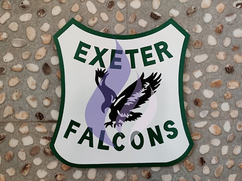 Exeter Falcons 1974