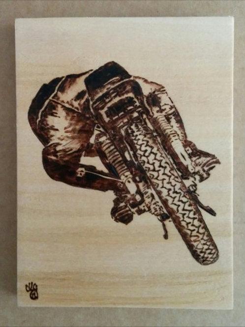 Biker's rear!