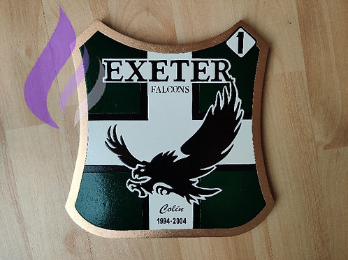 Exeter Falcons 2004