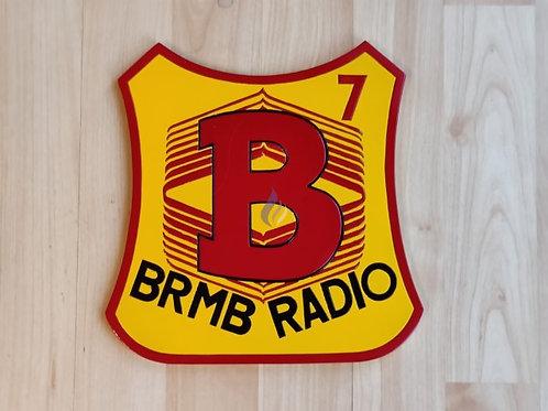 Birmingham Brummies 1979