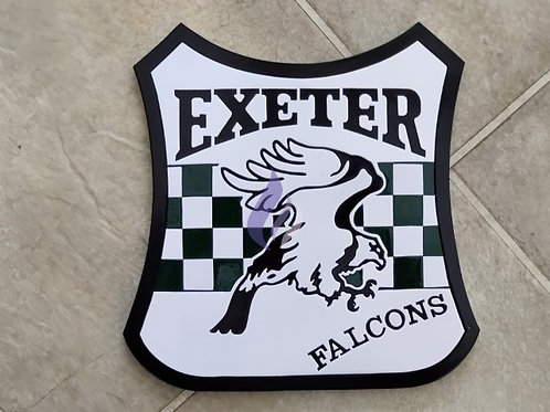 Exeter Falcons 1994