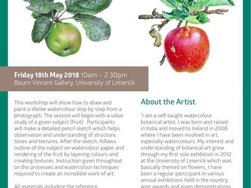 One day workshop at the University of Limerick, May 18th 2018