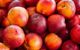 nectarines03.jpg