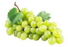 uva-tompson-crop-u339285.jpg