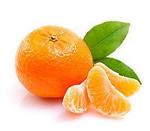mandarina_malvacea-crop-u297151.jpg