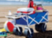 New Mac Sports Folding Beach Wagon