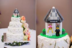 Fort_Worth_Botanical_Gardens_wedding_melissa_shook_photography27