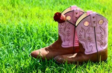 cowgirl boots for under 100 dollars new and used