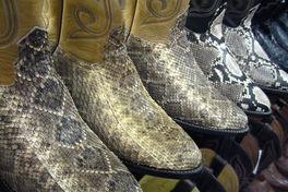 animal print western cowboy boots