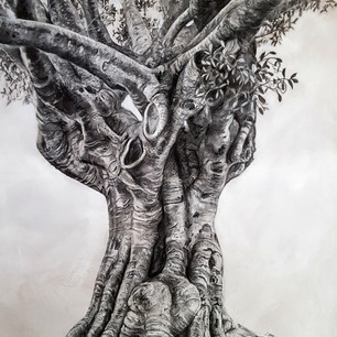 Fig Tree Drawing 3 - Hands