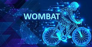 Wombat Icon 3.jpg