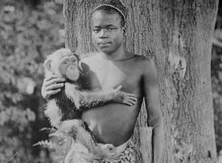 Más de un Siglo Después el zoo del Bronx Pide Disculpas por Exhibir a un Joven Africano en una Jaula
