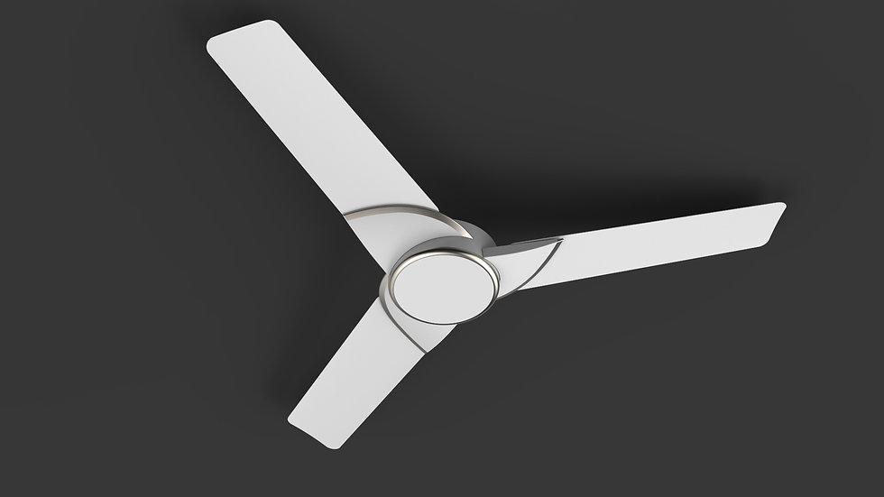 Fan.1113.jpg