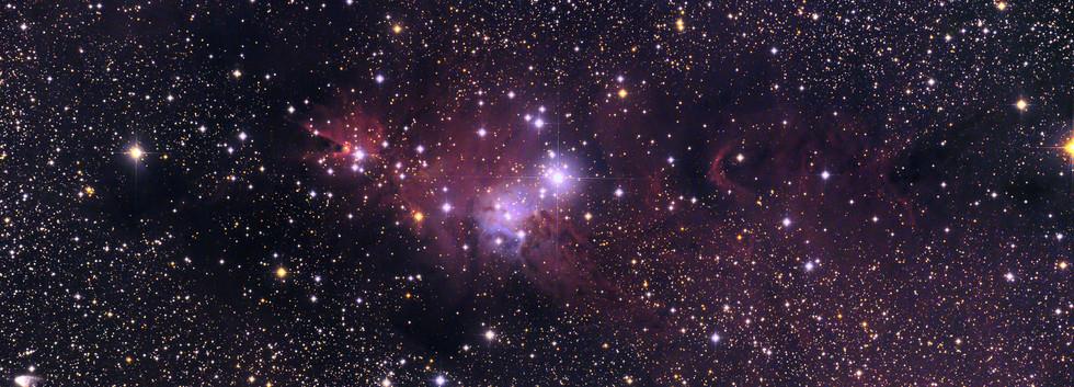 NGC2264LcomLRGBffweb.jpg