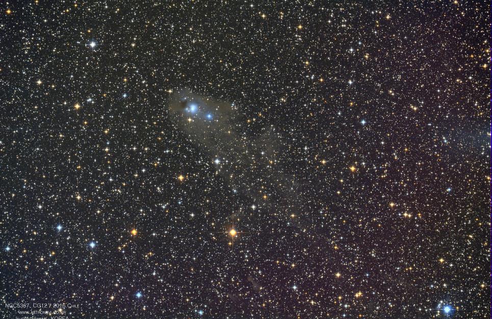 46P Comet / Takanori Kusano (CanonEF100,Crux170HD,Canon6D)