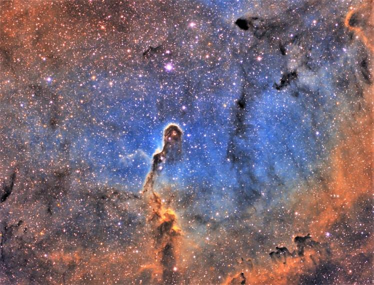 IC1396/Crux200/Kim,heungki.jpg