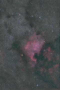 NGC7000Goldcat.jpg