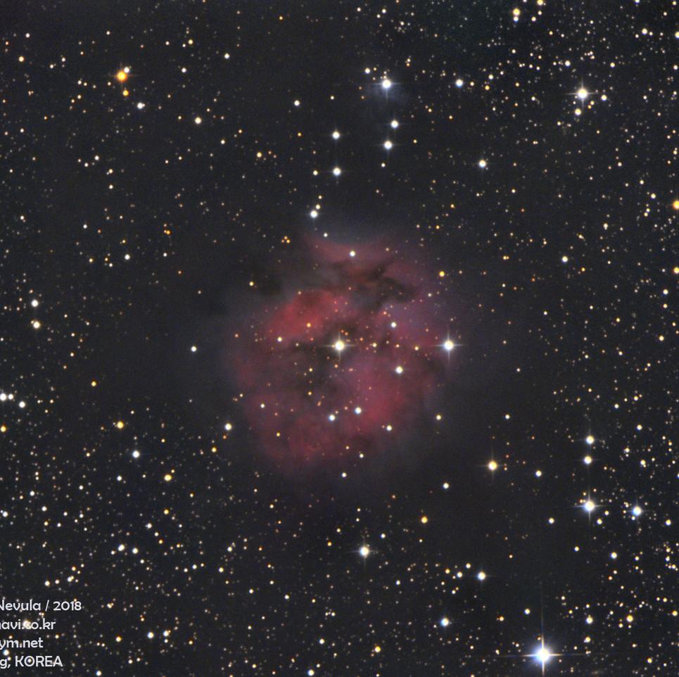 IC5146LRGBfinalwebss.jpg