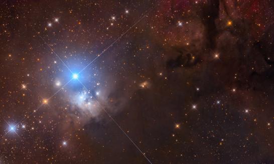 IC348-DN_LHJinwwoPark.jpg