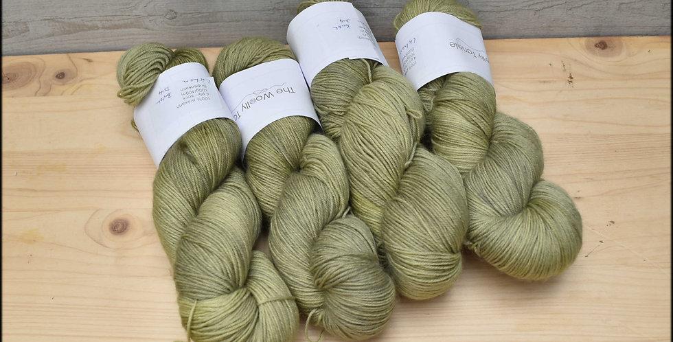 Lichen - polwarth 4ply