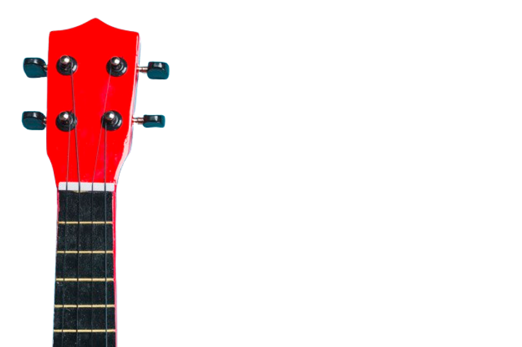 acoustic-classic-guitar-head-blue-backgr