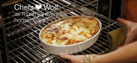Wolf Built-In Oven Repair Service