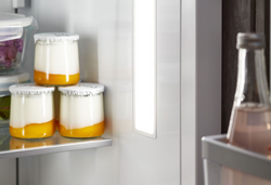 Bosch Refrigerator Repair Service