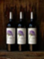 Agapanthus-Wine-Barossa- Shiraz