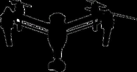 drone DJI films-drone BAETIS