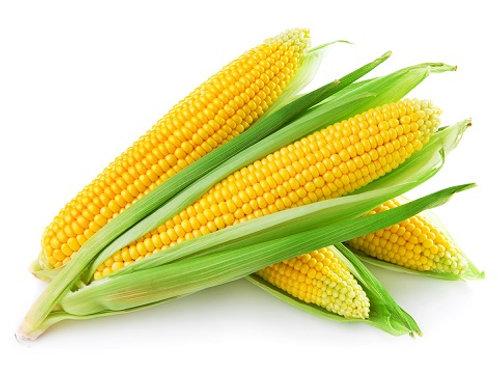 भुट्टा(कॉर्न)/ Corn 1 piece