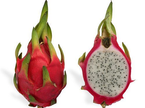 Dragon Fruit (medium size) -1