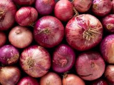 कांदा  / Onion Red 1 KG