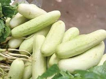 काकडी / Cucumber 1 Kg