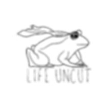 Superfrog-web.png