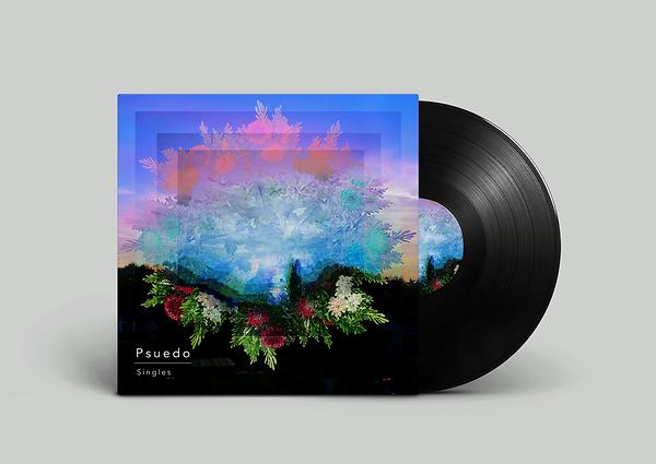 Vinyl-Record-Bonobo.png