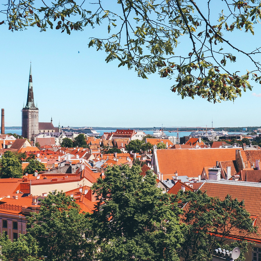 View from Tallinn from one of the various view point