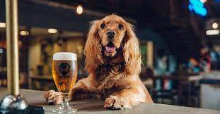 Cheers to the dog.