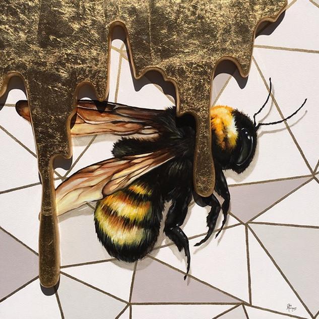 Bee Au 79