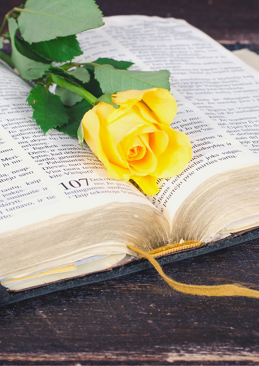 flowers and bible