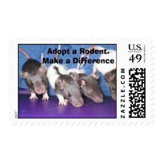 adopt_a_rodent_postage-rc197849a31324c15978893d4bb0e25e1_6b722_8byvr_324.jpg