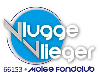 logo vlugge vlieger.jpg
