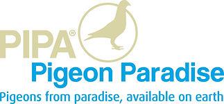 pipa logo huisstijl.jpg