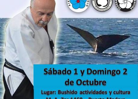1 y 2 de Octubre - 2do Seminario Luis Guz, 6to Dan. Puerto Madryn