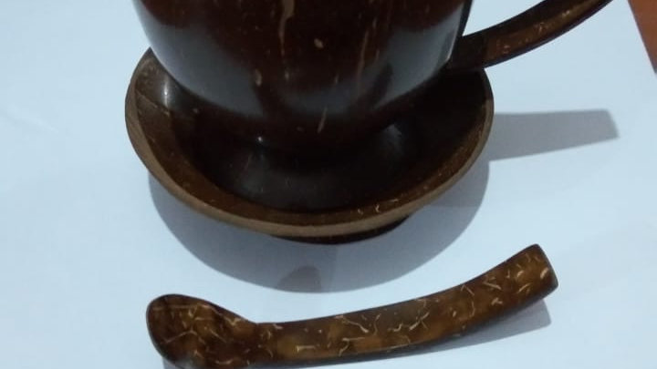 Polished  Coconut Bowl with Handle  and Spoon