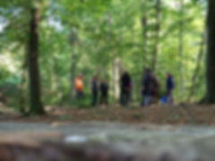 Gruppenangebot-Waldbaden-Bayern