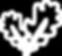 Waldbaden-Achtsamkeit-Tölz