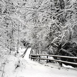 Einschlafpodcast: Winterwanderung