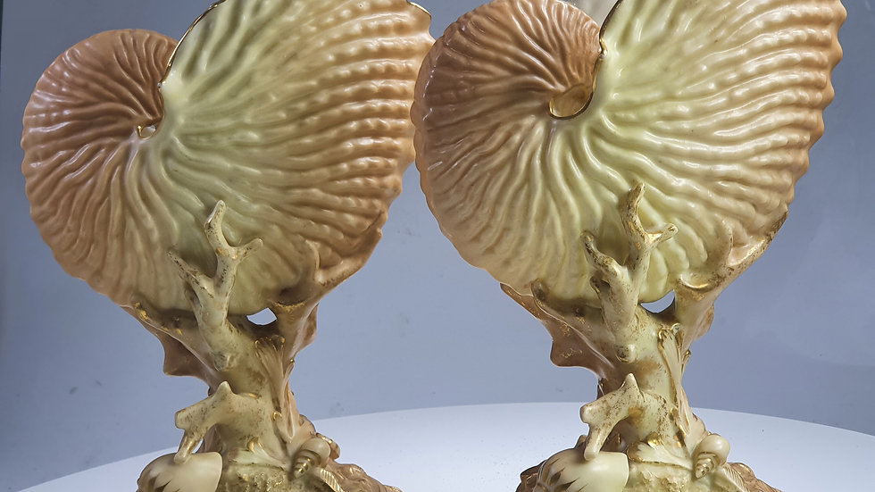 Stunning Large Antique Pr of Royal Worcester blush Nautilus shell vases c1910