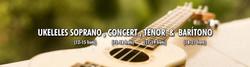 Imagen para página Wix - ukulele 01-2 (1