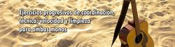 Imagen_para_página_Wix_-_gtr_acústica_06-1_(1664x450px)